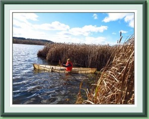 Out of the bullrushes into the Oxbow